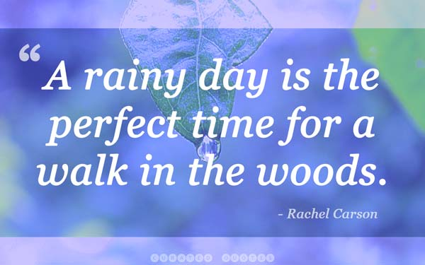 rainy-day-quote