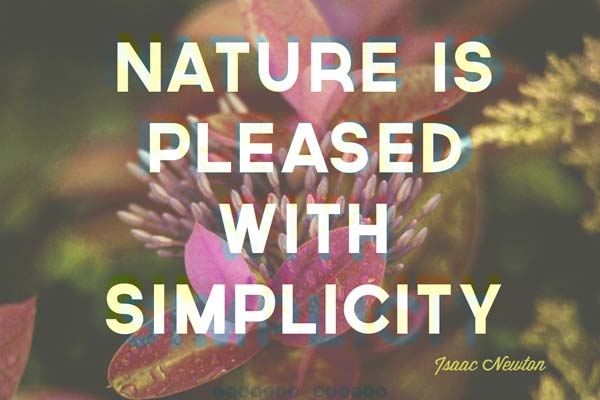 nature-is-pleased-with-simplicity