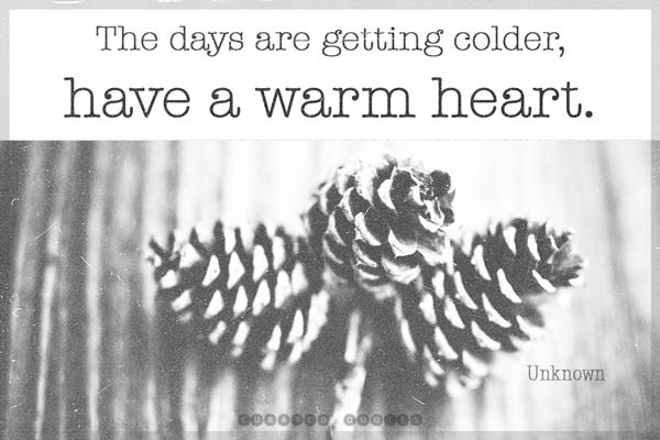 Cold Days Warm Heart