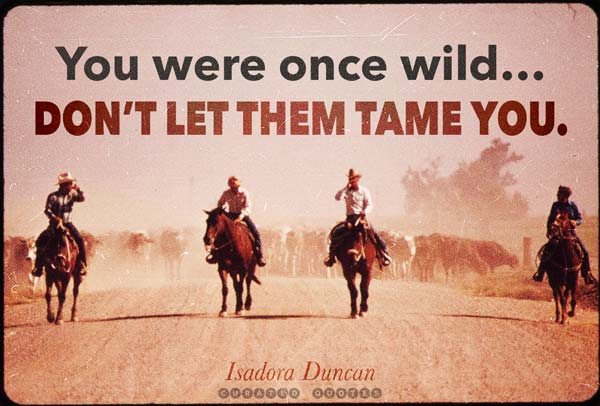You Were Once Wild
