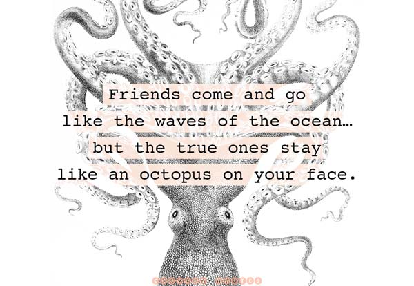 True Friends Like Octopus